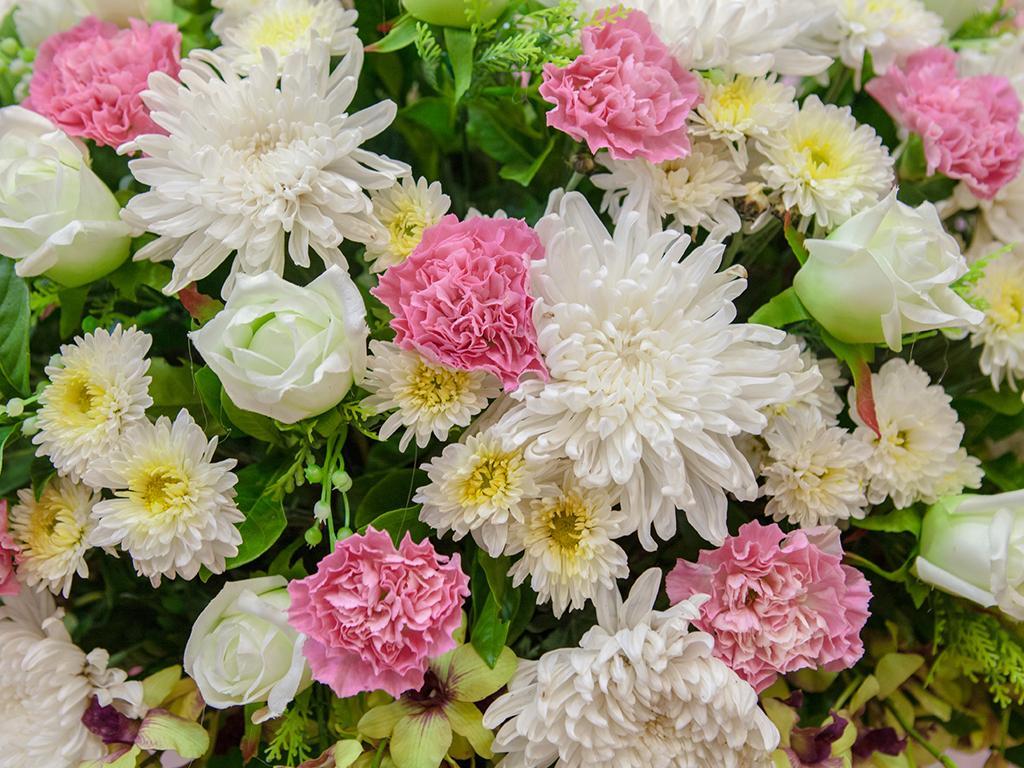 fiori_femminili